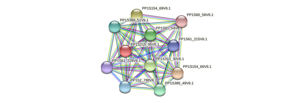 PP1S215_95V6.1 protein (Physcomitrella patens) - STRING interaction network