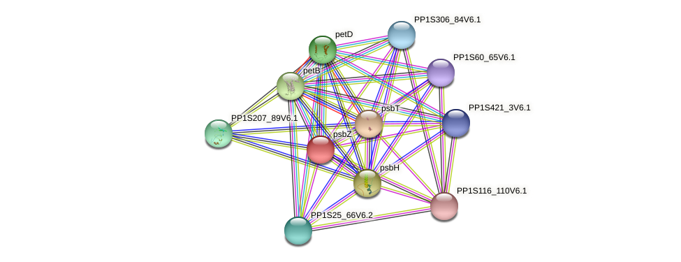 psbZ protein (Physcomitrella patens) - STRING interaction network