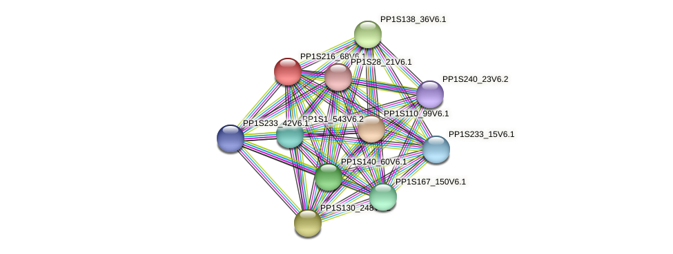 PP1S216_68V6.1 protein (Physcomitrella patens) - STRING interaction network
