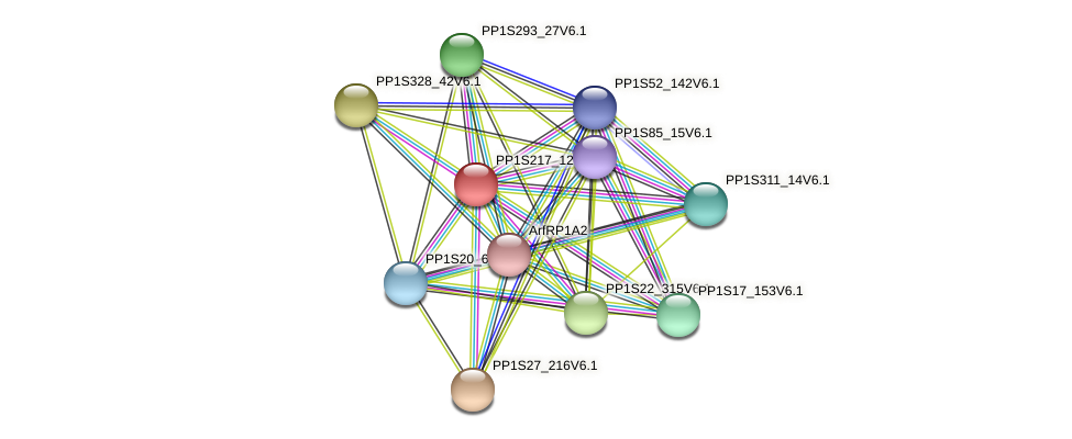 PP1S217_12V6.1 protein (Physcomitrella patens) - STRING interaction network