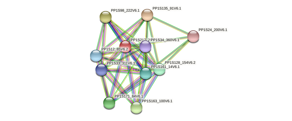 PP1S217_29V6.1 protein (Physcomitrella patens) - STRING interaction network