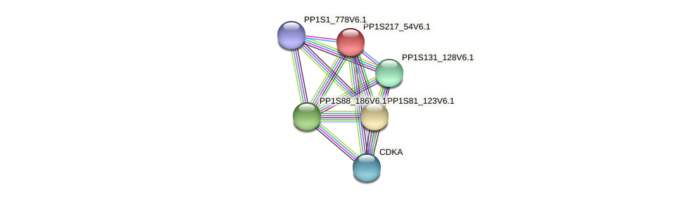 PP1S217_54V6.1 protein (Physcomitrella patens) - STRING interaction network