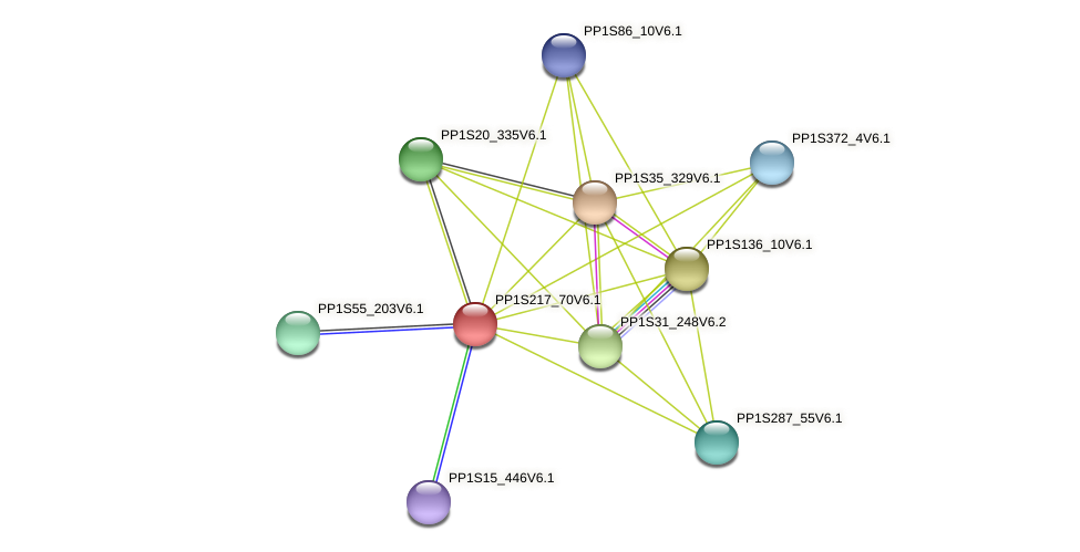 PP1S217_70V6.1 protein (Physcomitrella patens) - STRING interaction network
