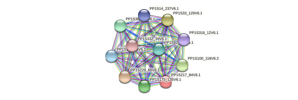 PP1S217_84V6.1 protein (Physcomitrella patens) - STRING interaction network