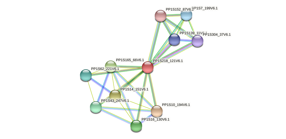 PP1S218_121V6.1 protein (Physcomitrella patens) - STRING interaction network