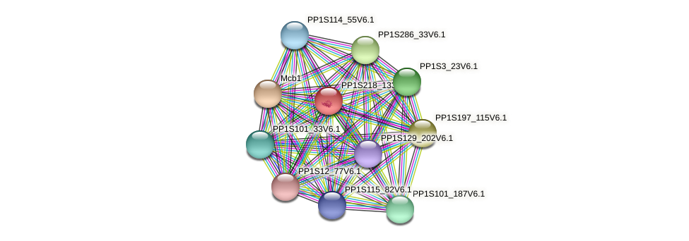 PP1S218_133V6.1 protein (Physcomitrella patens) - STRING interaction network