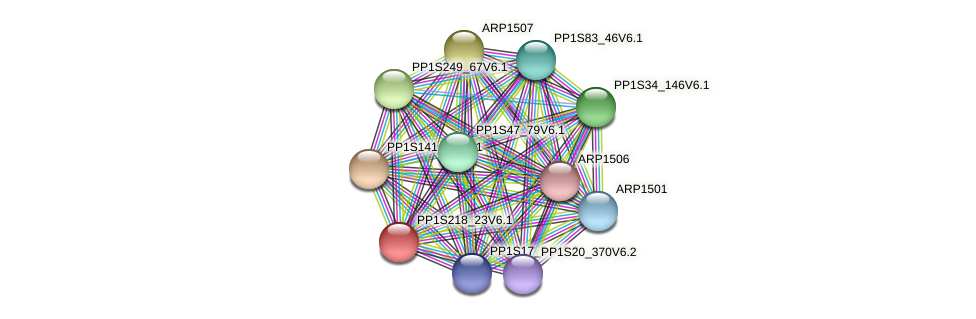 PP1S218_23V6.1 protein (Physcomitrella patens) - STRING interaction network