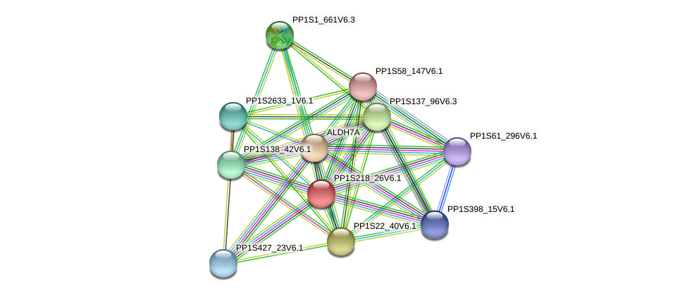PP1S218_26V6.1 protein (Physcomitrella patens) - STRING interaction network