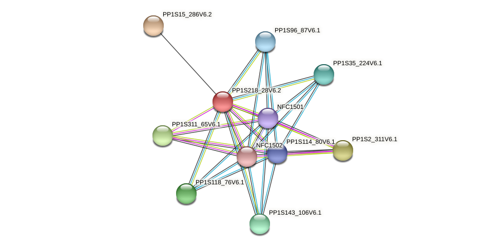 PP1S218_28V6.1 protein (Physcomitrella patens) - STRING interaction network