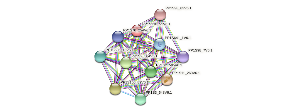 PP1S218_51V6.1 protein (Physcomitrella patens) - STRING interaction network