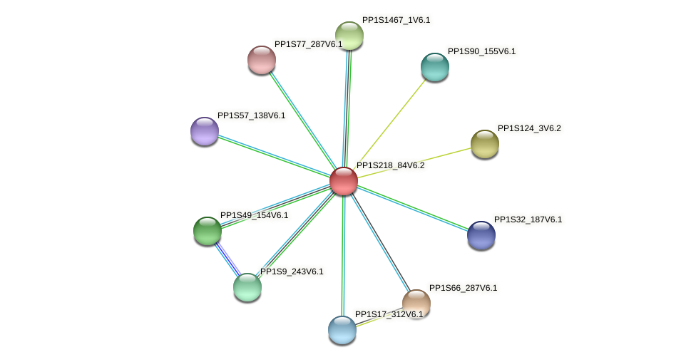 PP1S218_84V6.1 protein (Physcomitrella patens) - STRING interaction network