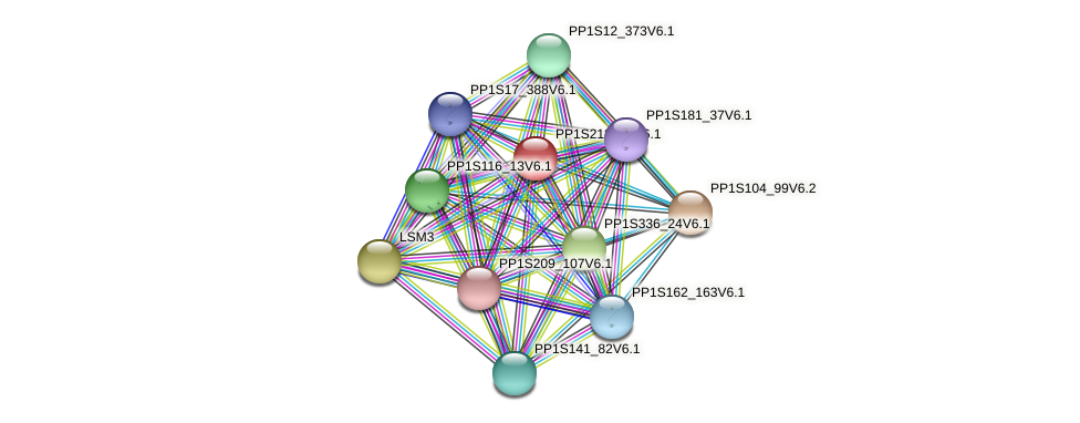 PP1S218_92V6.1 protein (Physcomitrella patens) - STRING interaction network
