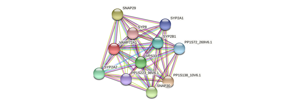VAMP72A1 protein (Physcomitrella patens) - STRING interaction network
