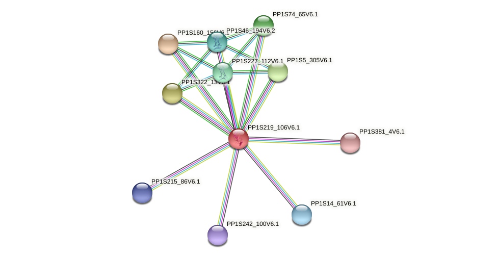 PP1S219_106V6.1 protein (Physcomitrella patens) - STRING interaction network