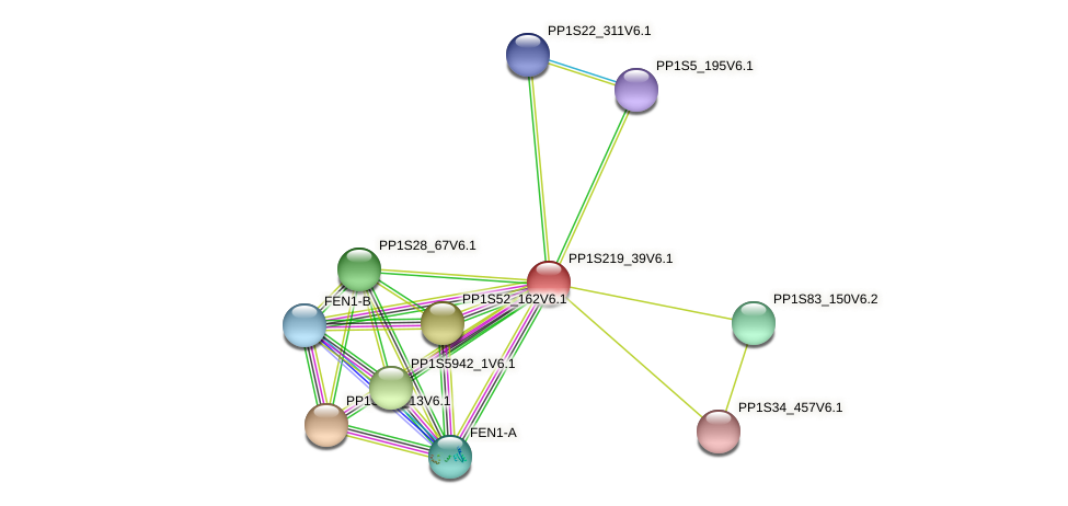 PP1S219_39V6.1 protein (Physcomitrella patens) - STRING interaction network