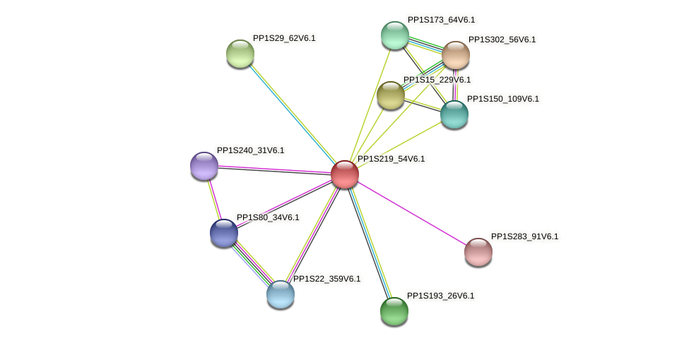 PP1S219_54V6.1 protein (Physcomitrella patens) - STRING interaction network