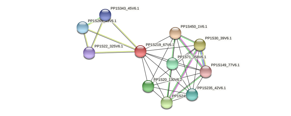 PP1S219_67V6.1 protein (Physcomitrella patens) - STRING interaction network