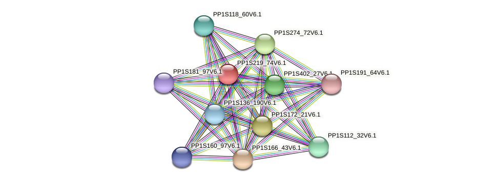 PP1S219_74V6.1 protein (Physcomitrella patens) - STRING interaction network