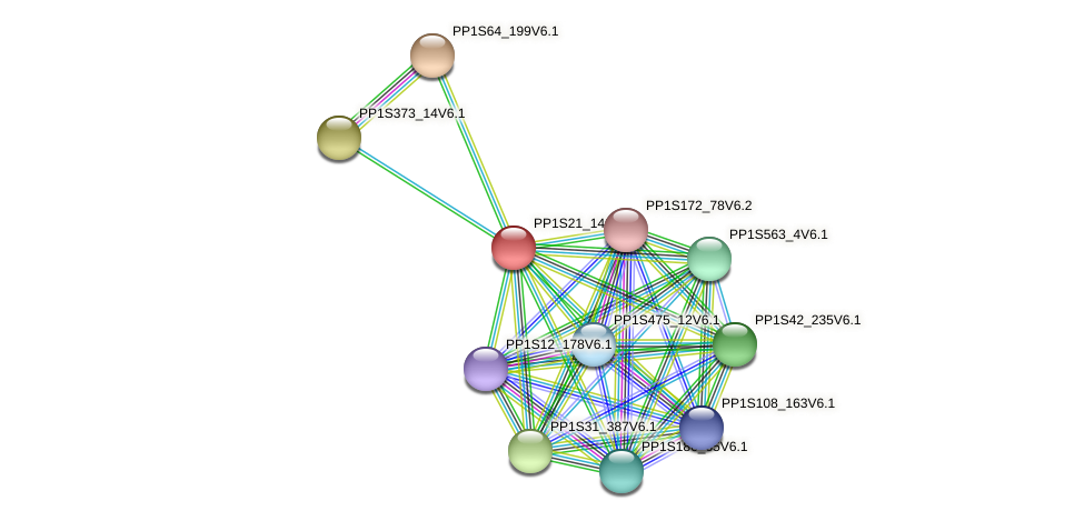 PP1S21_140V6.1 protein (Physcomitrella patens) - STRING interaction network