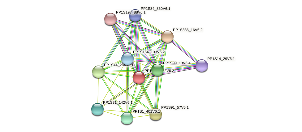 PP1S21_182V6.2 protein (Physcomitrella patens) - STRING interaction network
