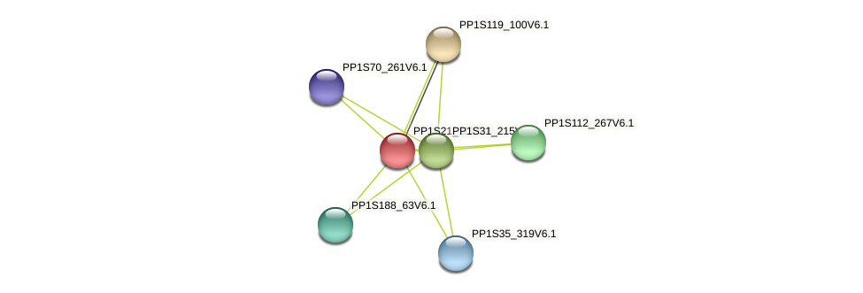 PP1S21_18V6.1 protein (Physcomitrella patens) - STRING interaction network