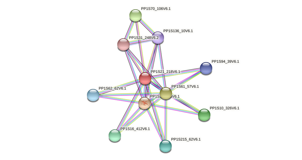 PP1S21_218V6.1 protein (Physcomitrella patens) - STRING interaction network