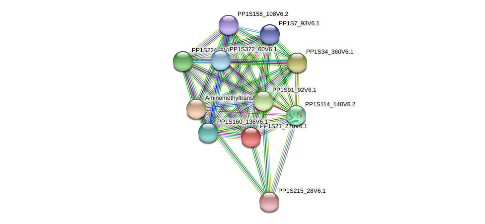 PP1S21_270V6.1 protein (Physcomitrella patens) - STRING interaction network