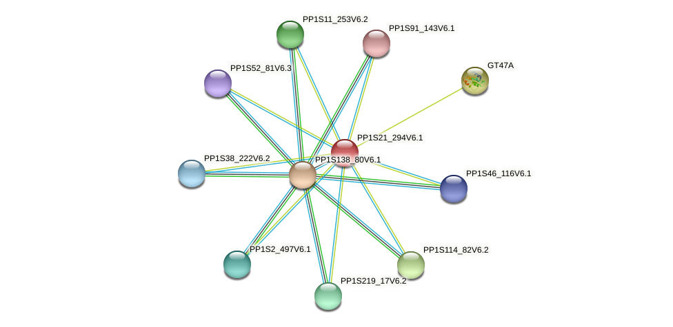 PP1S21_294V6.1 protein (Physcomitrella patens) - STRING interaction network