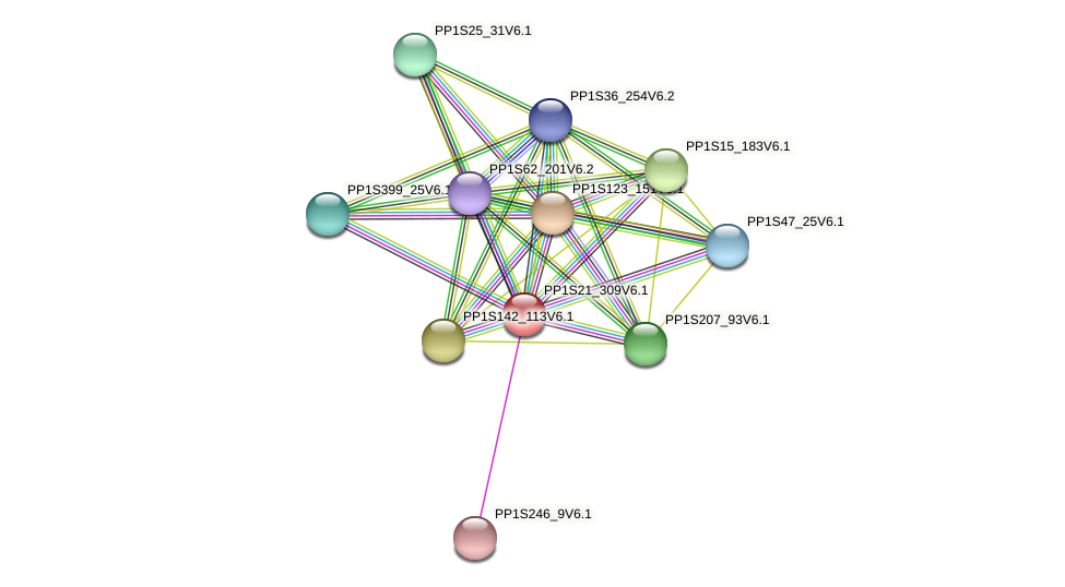 PP1S21_309V6.1 protein (Physcomitrella patens) - STRING interaction network
