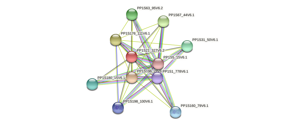 PP1S21_327V6.1 protein (Physcomitrella patens) - STRING interaction network