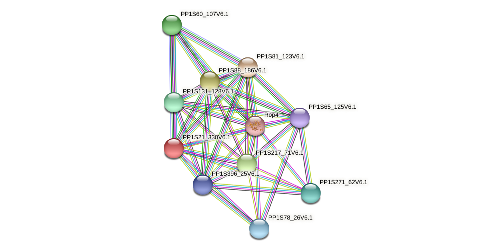 PP1S21_330V6.1 protein (Physcomitrella patens) - STRING interaction network
