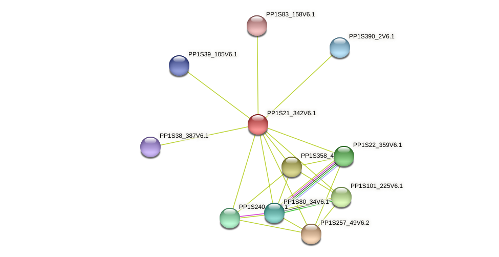 PP1S21_342V6.1 protein (Physcomitrella patens) - STRING interaction network