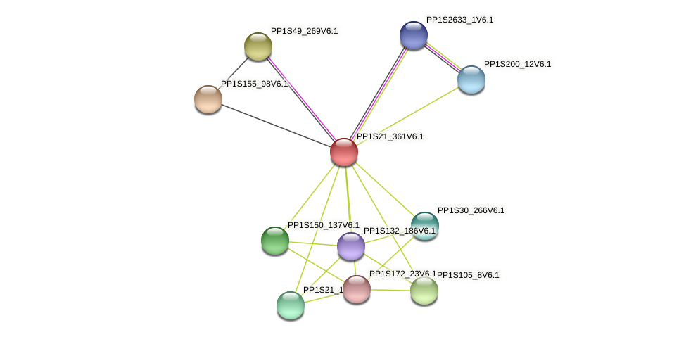 PP1S21_361V6.1 protein (Physcomitrella patens) - STRING interaction network