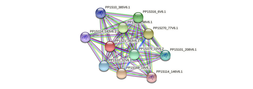 PP1S21_363V6.1 protein (Physcomitrella patens) - STRING interaction network