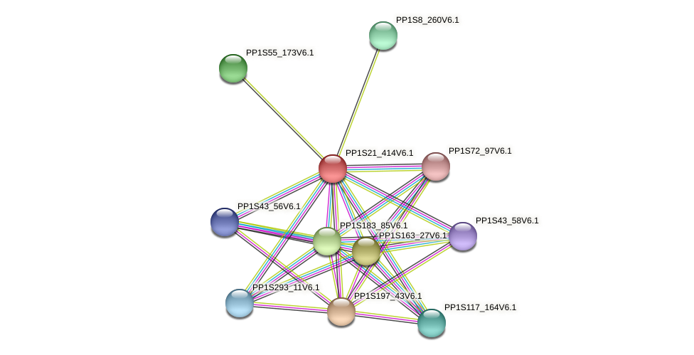 PP1S21_414V6.1 protein (Physcomitrella patens) - STRING interaction network