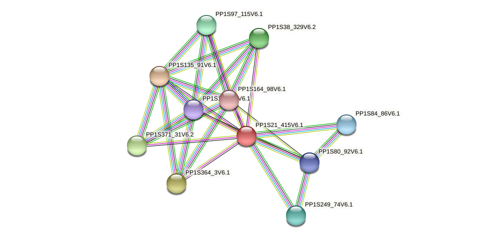 PP1S21_415V6.1 protein (Physcomitrella patens) - STRING interaction network