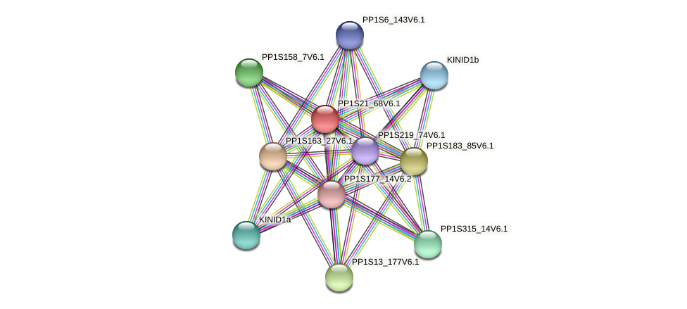 PP1S21_68V6.1 protein (Physcomitrella patens) - STRING interaction network