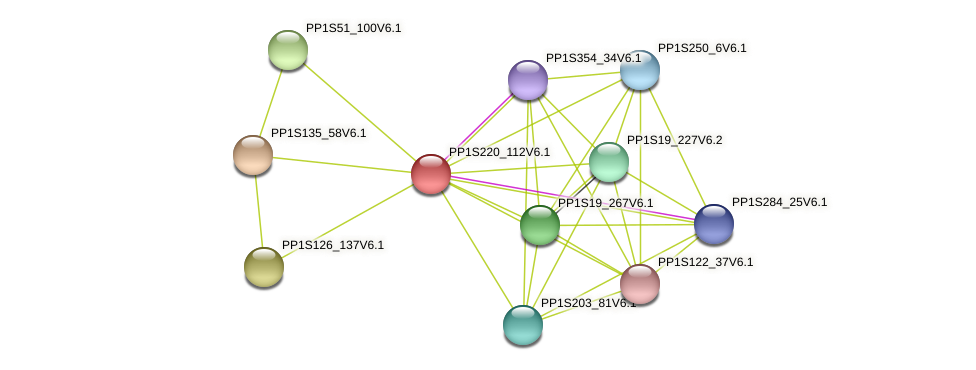 PP1S220_112V6.1 protein (Physcomitrella patens) - STRING interaction network