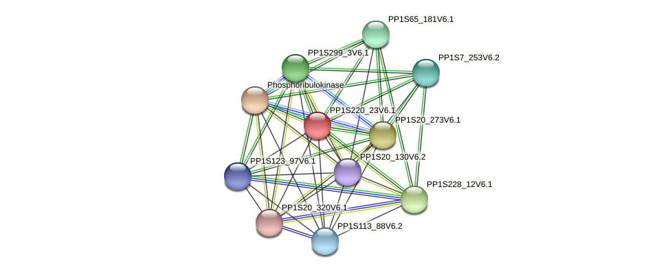 PP1S220_23V6.1 protein (Physcomitrella patens) - STRING interaction network