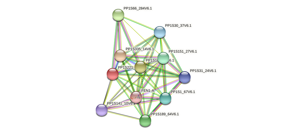 PP1S221_62V6.1 protein (Physcomitrella patens) - STRING interaction network
