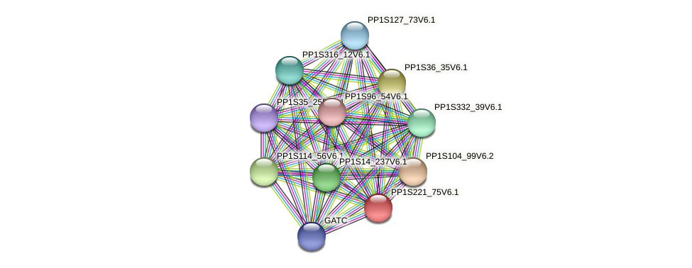 PP1S221_75V6.1 protein (Physcomitrella patens) - STRING interaction network
