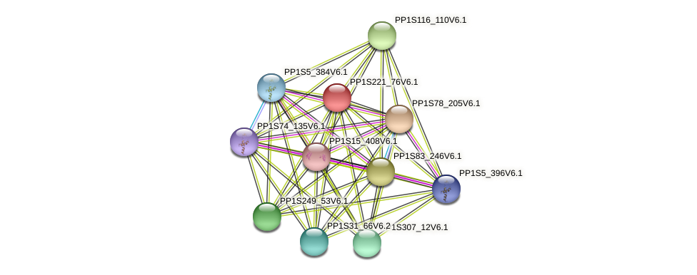 PP1S221_76V6.1 protein (Physcomitrella patens) - STRING interaction network