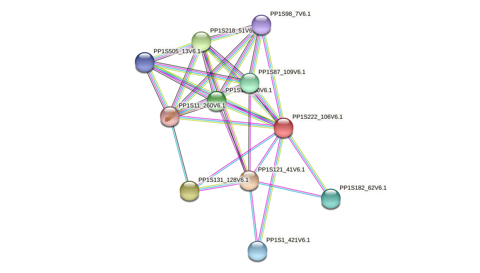 PP1S222_106V6.1 protein (Physcomitrella patens) - STRING interaction network