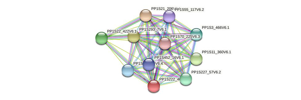 PP1S222_40V6.1 protein (Physcomitrella patens) - STRING interaction network