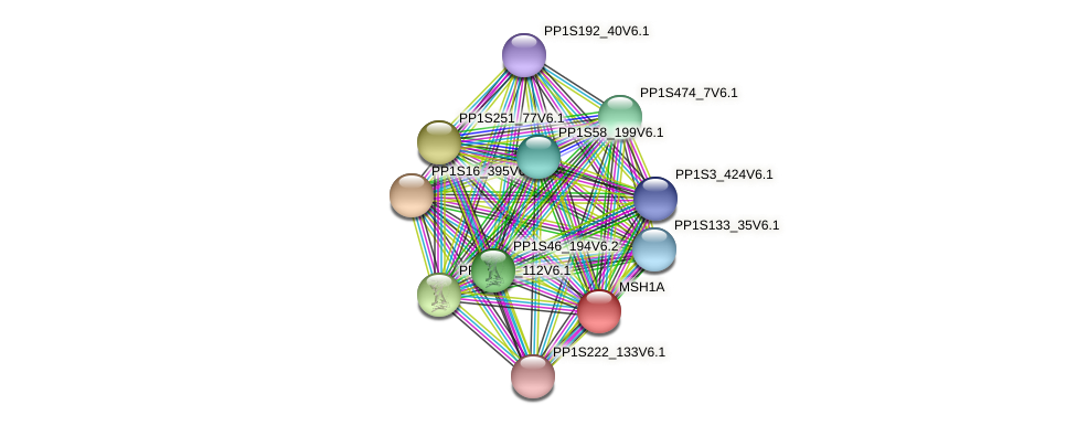 PP1S222_41V6.1 protein (Physcomitrella patens) - STRING interaction network