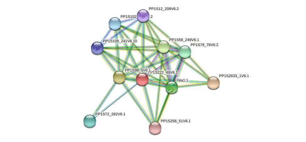 PP1S222_49V6.1 protein (Physcomitrella patens) - STRING interaction network