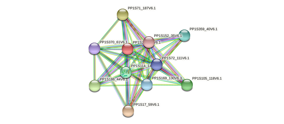 PP1S222_99V6.1 protein (Physcomitrella patens) - STRING interaction network