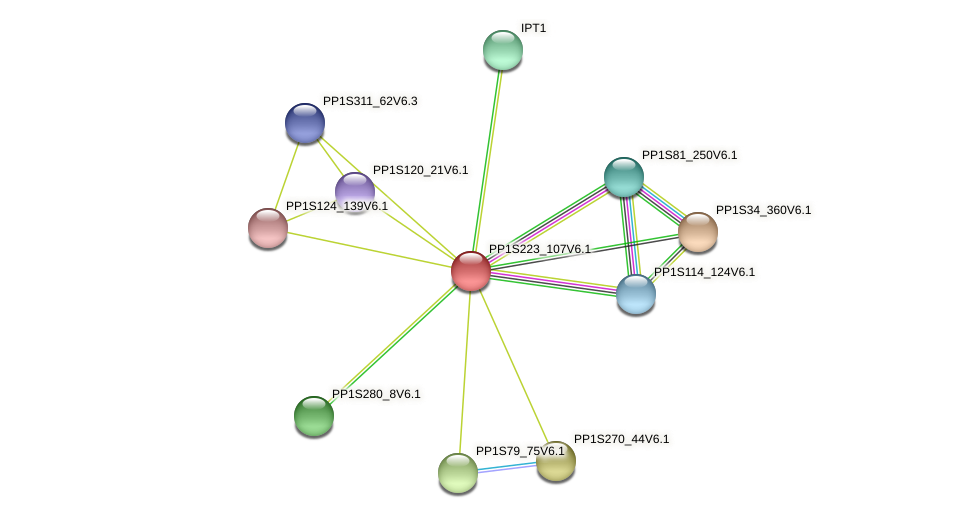 PP1S223_107V6.1 protein (Physcomitrella patens) - STRING interaction network