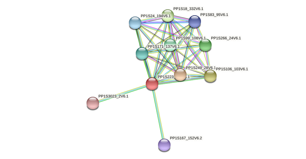 PP1S223_121V6.1 protein (Physcomitrella patens) - STRING interaction network