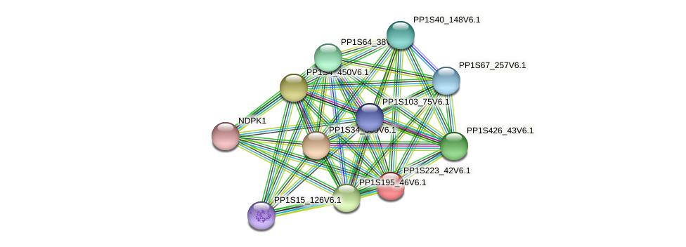 PP1S223_42V6.1 protein (Physcomitrella patens) - STRING interaction network